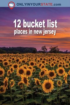 Travel & New Jersey & Attracti& Travel & New Jersey & Attractions & Explore & Adventure & Local Finds & Scenic & Weekend & Bucket List & Things To Do & Outdoor Places To Travel, Places To Go, Travel Things, Travel Destinations, Newark New Jersey, Beautiful Park, Cape May, By Train, Travel Usa