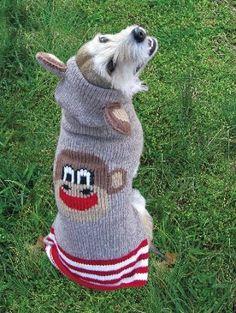 Sock-Monkey Dog Sweater with Ears.  So cute!!!!!