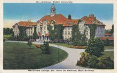 Macdonald College STE ANNE DE BELLEVUE Quebec Canada 1937 Miller Art Co Postcard | eBay
