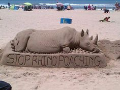 Rhino sand art on North Beach - Durban - South Africa. Durban South Africa, City By The Sea, Kwazulu Natal, Sand Sculptures, North Beach, Sand Art, Travel Planner, My Heritage, Rest Of The World