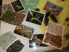 Nämä kuvat ja tunnustelu levyt saa Kurjenmäkikoti omakseen. Iso kiitos!