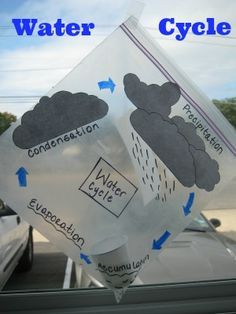diy tutorial fog water rain create your own water cycle in a plastic bag subjects Elementary Science, Science Classroom, Science Fair, Science Lessons, Teaching Science, Science Education, Science For Kids, Physical Science, Science Penguin