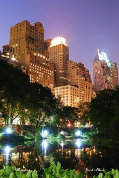 New York City Central Park at night by Songquan Deng