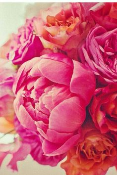 Red Peonies, Image Photography, Art Images, Color Inspiration, Raspberry, Hot Pink, Bloom, Peach, Rose