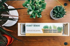 Grow an herb garden that fits right on your windowsill! Herb kit includes Oregano, Parsley, Chives, and Cilantro seeds with Jiffy peat pellets, so you can get growing right out of the box. Hallmark Channel, Herb Garden Kit, Garden Ideas, Grow Kit, Herb Seeds, Enter To Win, Flowers Perennials, Window Sill, Flower Seeds
