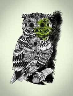 'Owl' by Krikoui
