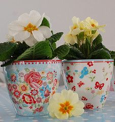 "GreenGate ""Maggie"" blue & ""Molly"" white latte cups with potted flowers"