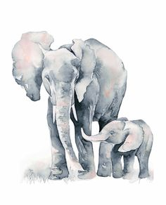 Images For > Watercolor Elephant Painting