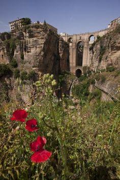 foto Il Ponte di Ronda, Andalusia - Reportage, paesaggi - Realizzata da: albysalerno - UniversoFotografico.it