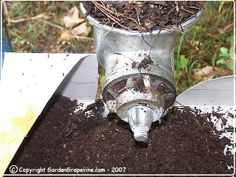 shred leaves using old meat grinder for faster composting