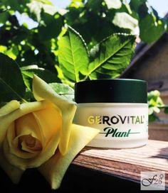 Maci, Beauty, Plant, Cosmetology