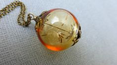 Dandelion seed necklace  Amber  glass orb  Botanical  antique brass   Make a wish  Real Dry flower jewelry  Bridesmaids gift
