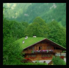 Looks so peaceful here.  Cool grass roof.