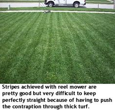 1000 images about reel lawn mowers on pinterest reel lawn mower lawn mower and rotary mower. Black Bedroom Furniture Sets. Home Design Ideas