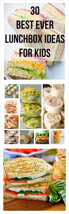 30 Best Ever Lunch box ideas for kids – PepperLace