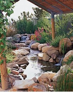 A natural backyard. Plant natives, and birds will follow. That's what Mary and Joe Bochiechio found when they installed their garden in San Marcos.  After removing the lawn, designer and contractor Greg Rubin ― who specializes in California natives ― installed a meandering path bordered by fragrant 'Bee's Bliss' salvia, wild lilacs, and an existing non-native purple tree mallow ― all pretty, low-water plants.