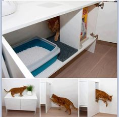 Hidden cat litter tray - I want this for my cats. I like that it is raised so can easily sweep mess from bottom of cupboard.