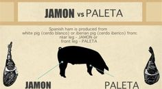 Spanish jamon infographic White Pig, Ham, Infographic, Spanish, Infographics, Hams, Info Graphics, Spanish Language