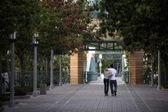 University of California--Irvine | UC Irvine | Photos | US News Best Colleges