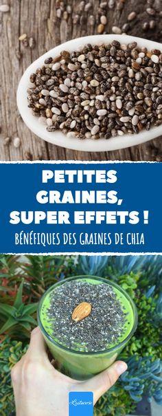 6 effets bénéfiques des graines de Chia