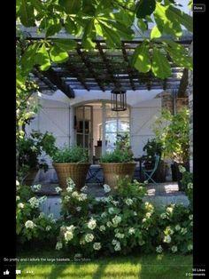 Deck, Patio, Decks, Terrace Garden