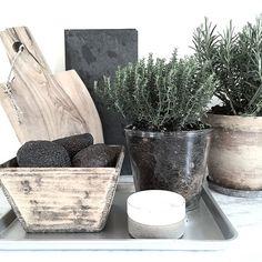 Herbs for tonight's cooking ... #nordiskrum #nature #nordic #nordiskerom #nordicdesign #nordicliving #nordiskehjem #naturalliving #nordiclifestyle #nordisklivsstil #bobedre #boligliv #boligmagasinetdk #interior #inredning #interiør #inspiration #interior4all #design_bazaar #home #christiansenogco