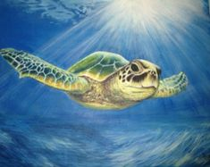 Canvas Art, Modern Wall Art, Stretched, Embellished & Ready-to-Hang Print - Vanila Sky - Art by Osnat Sea Turtle Painting, Sea Turtle Art, Sea Turtles, Sea Turtle Pictures, Turtle Rock, Ocean Creatures, Ocean Art, Beach Art, Animal Paintings