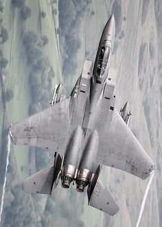 mcdonnell douglas f-15 (great picture)