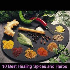 Ayurveda 10 best healing spices