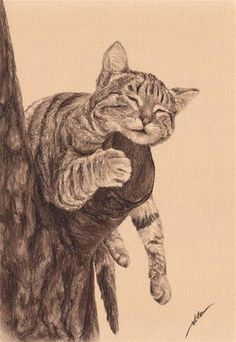 """~ Leo the Cat ~"" - Original Fine Art for Sale - © Maga Fabler Sepia Colored Pencil"