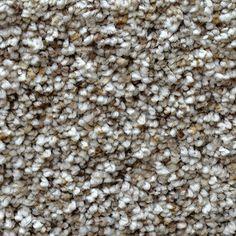 Dreamweaver Carpet Product Name: Soft Harmony II Style Code: 9442
