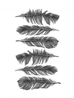 Free falling, 50x70 cm - Illustration - Illustrations - ART #nordicdesigncollective