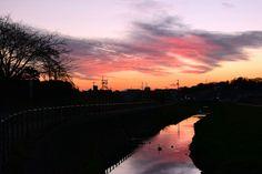 「大柏川の夕景」 2016.01.27市川市リハビリテーション病院近くの大柏川で撮りました。 大柏川の上流は、空が開けていて夕焼けが映えるので、夕方のお散歩にもいいですよ♪ Evening Landscapes in Ogasiwagawa River,Ichikawa city,Japan