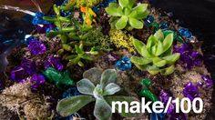 Maker Pro News: Should Gadgets Expire Like Milk? | Make: http://makezine.com/2017/03/04/maker-pro-news-should-gadgets-expire-like-milk/?utm_campaign=crowdfire&utm_content=crowdfire&utm_medium=social&utm_source=pinterest