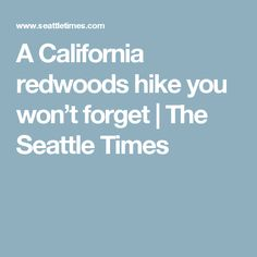 A California redwoods hike you won't forget | The Seattle Times