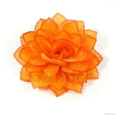 Ansteckblume, Haarblume Dahlie in orange
