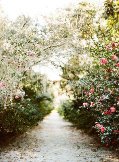 Lovely and fairytale-like