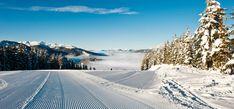 Bungalow Nr. 33 – (d)ein Ferienhaus – alpin. gemütlich. stylish. Bungalow, Winter, Outdoor, Ski, Paradise, Tourism, Cottage House, Places, Vacation