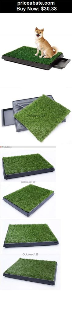 Animals-Dog: Pet Park Indoor Potty Dog Grass Mat Pad Training Petzoom Puppy Patch Patio 2015 - BUY IT NOW ONLY $30.38