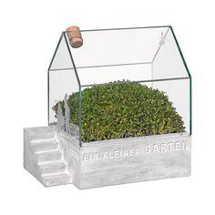Der kleine Garten passt bequem auf Ihren Schreibtisch und verschönert dort Ihren Arbeitsplatz. Oder machen Sie einer Großstadtpflanze ein schönes Geschenk, ein Blumenarrangement der ganz besonderen Art. Oder verzaubern Sie Ihren Wohnbereich mit einem kleinen, grünen Paradies. Das kleine Gartenhäuschen aus Glas ist ein schönes Geschenk, für alle, die sich schon immer einen Garten gewünscht haben.