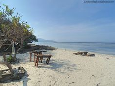 Visiting Gili islands in Indonesia is a MUST because of wonderful beaches and unique underwater world. This paradise in Indonesia can offer more, read what! Restaurant On The Beach, Gili Trawangan, Gili Island, Underwater World, The Locals, Islands, Paradise, Travel, Outdoor