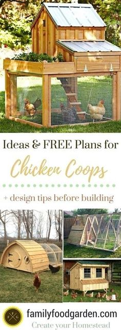 Chicken Coop - Lots of chicken coops for inspiration! Find chicken coops you can buy & chicken coop kits. DIY chicken coops and the best chicken coop ideas. Colorful and fun chicken coops to brighten your backyard. #vegetablegardeningdesign Building a chicken coop does not have to be tricky nor does it have to set you back a ton of scratch.