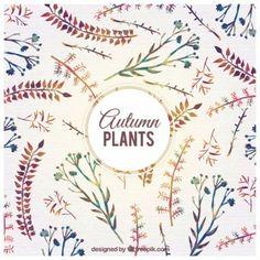 Watercolor autumn plants