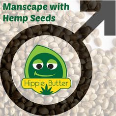 Oh, sure, we can use any old thing for shaving. Thankfully, hemp seed oil does not contribute to dryness. Medical Marijuana, Cannabis, Health Tips, Health And Wellness, Hemp Seeds, Seed Oil, Shaving, Skin Care, Ganja
