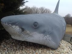 Jaws 2, Jaws Movie, Jaws Bruce, Odd Stuff, Universal Studios, Sharks, Abandoned Places, Cool Toys, Horror Movies