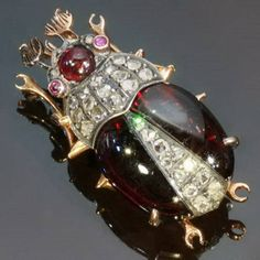 Antique Beetle Jewelry