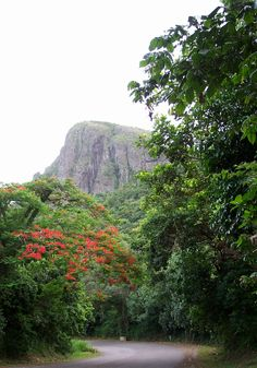 La Piquiña de Cayey, Puerto Rico