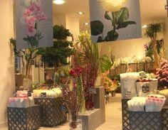 pretty pretty flower shop display