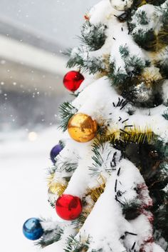 Top Survival Tips for Holiday Travel with @luxepak! #christmas #travel #tips