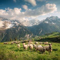 Unterschachern, Swiss Alps / David Kaplan